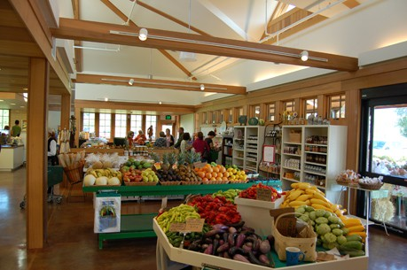Verrill Farm Concord