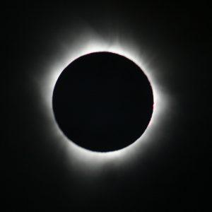 eclipse-pregnancy-babies